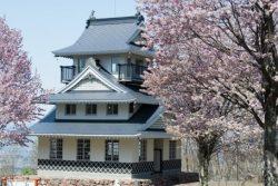 キトウシ 桜
